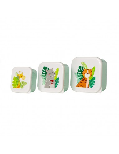 Set Tuppers Safari Mundo Petit